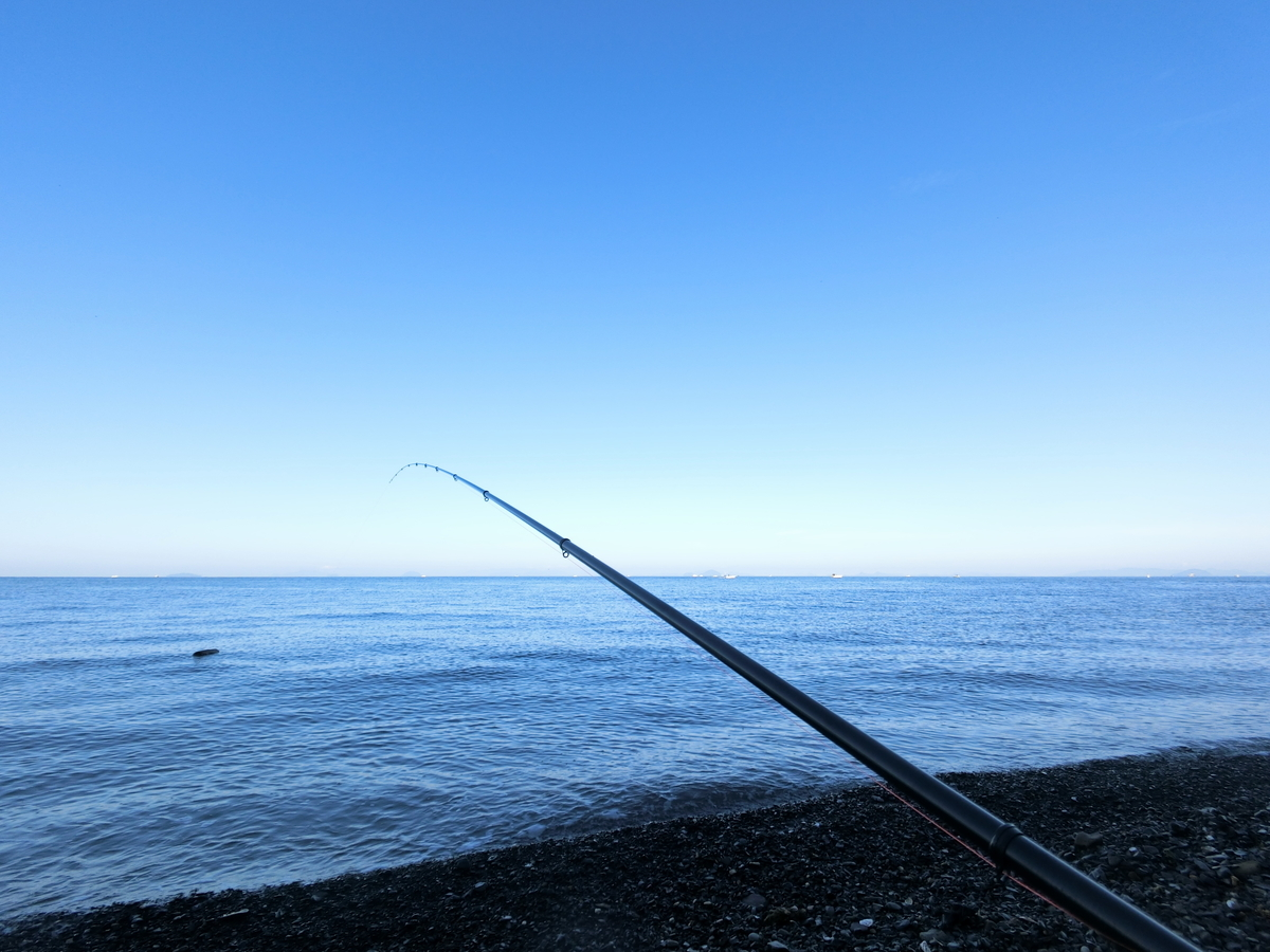 f:id:berao-setouchi-fishing:20201115173444j:plain