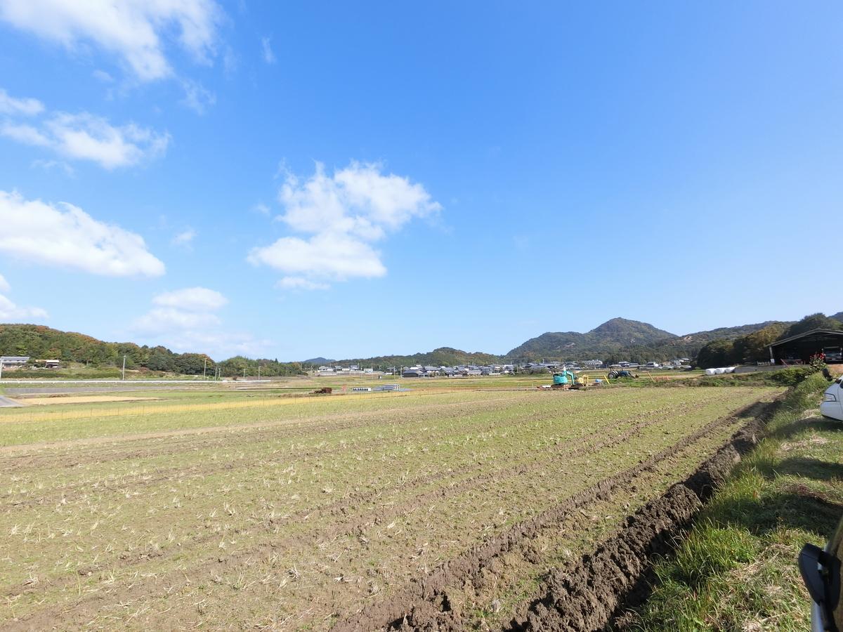 f:id:berao-setouchi-fishing:20201116220537j:plain