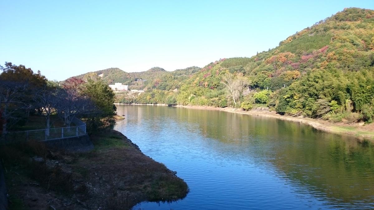 f:id:berao-setouchi-fishing:20201116221226j:plain