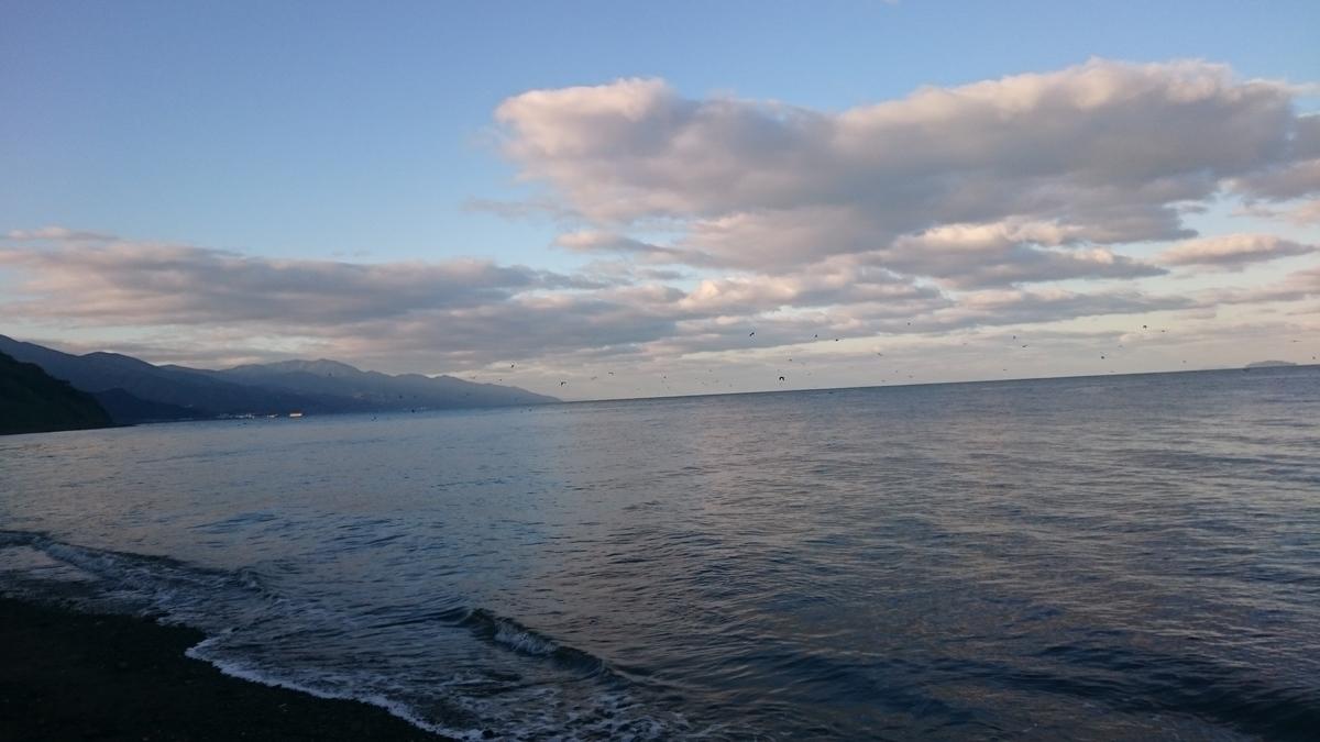 f:id:berao-setouchi-fishing:20201121200326j:plain