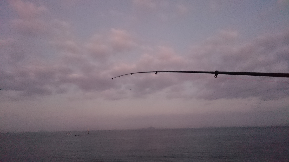 f:id:berao-setouchi-fishing:20201123155757j:plain
