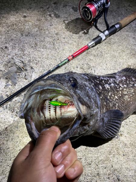 f:id:berao-setouchi-fishing:20201208212422j:plain