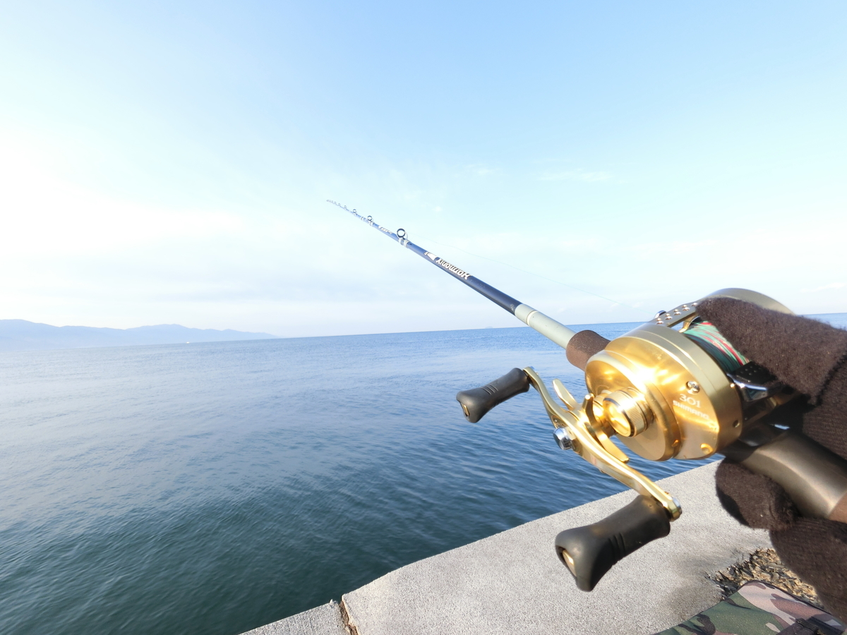f:id:berao-setouchi-fishing:20201227133556j:plain