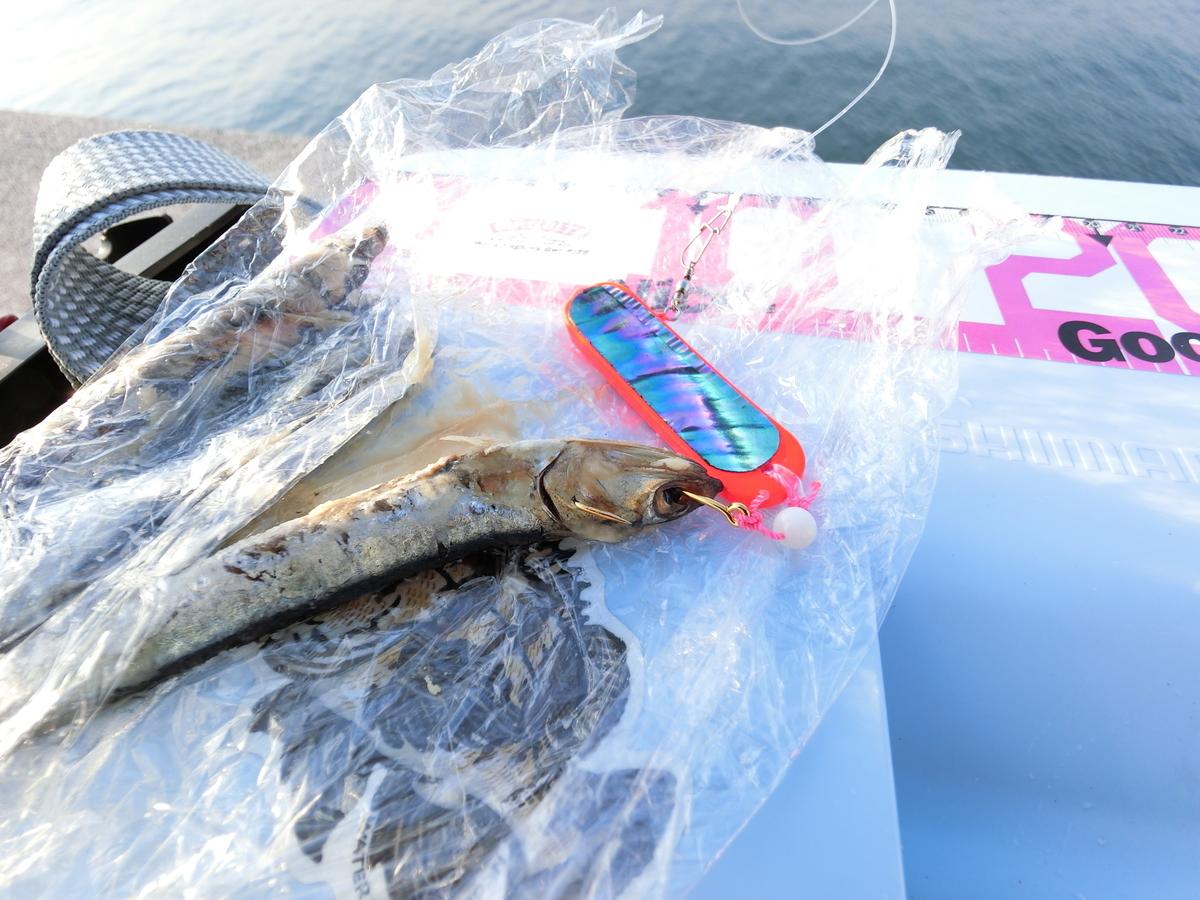 f:id:berao-setouchi-fishing:20201227133606j:plain