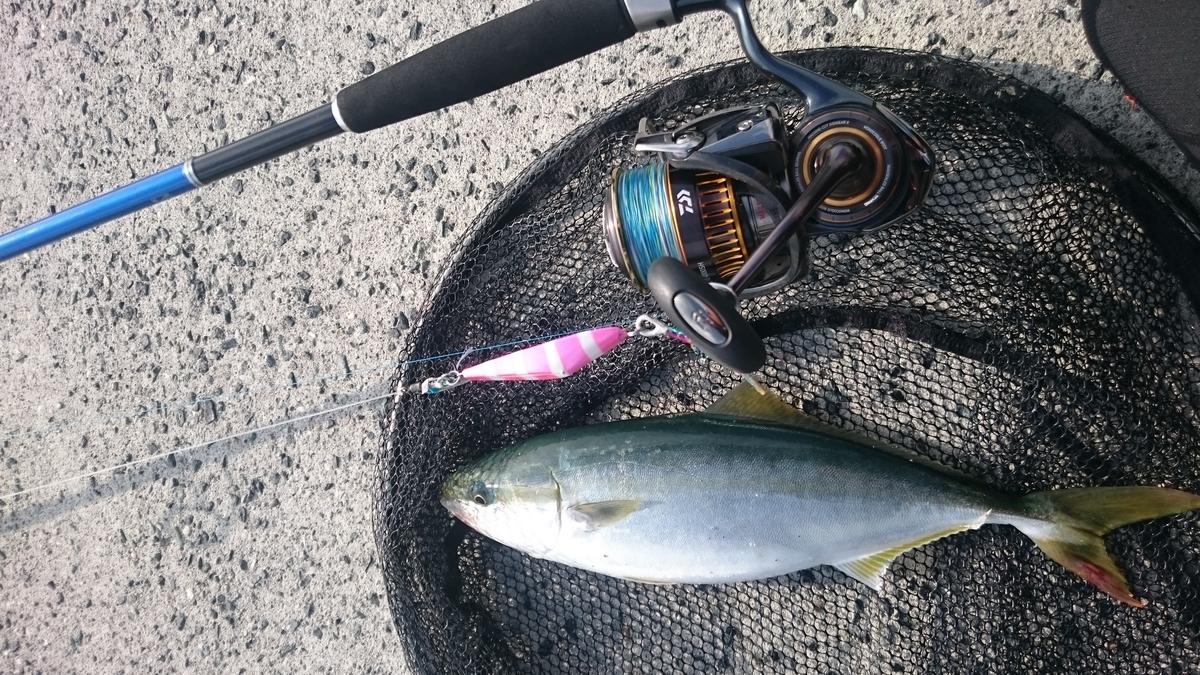 f:id:berao-setouchi-fishing:20201230114511j:plain