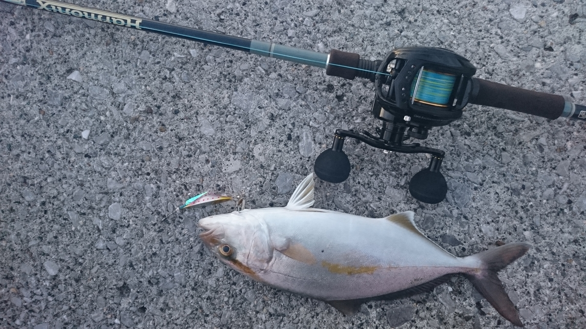 f:id:berao-setouchi-fishing:20201230114714j:plain