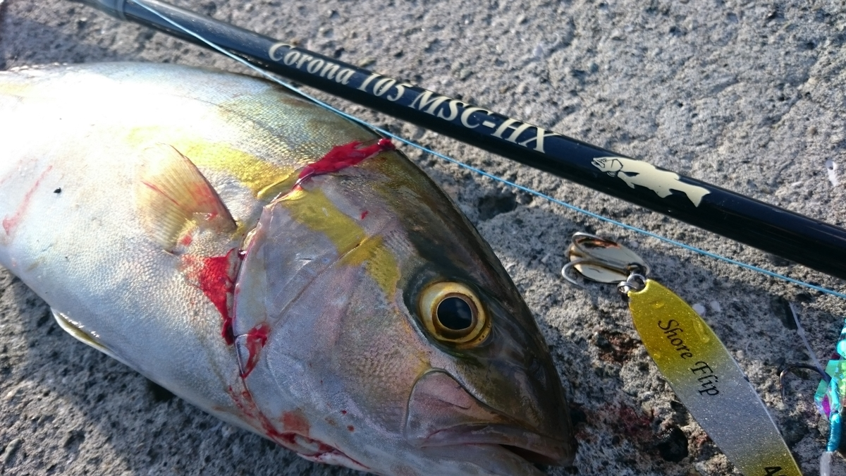 f:id:berao-setouchi-fishing:20201230114724j:plain