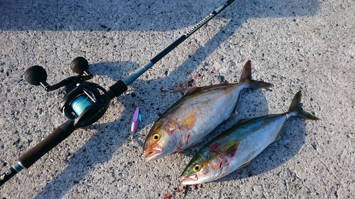 f:id:berao-setouchi-fishing:20201230114741j:plain