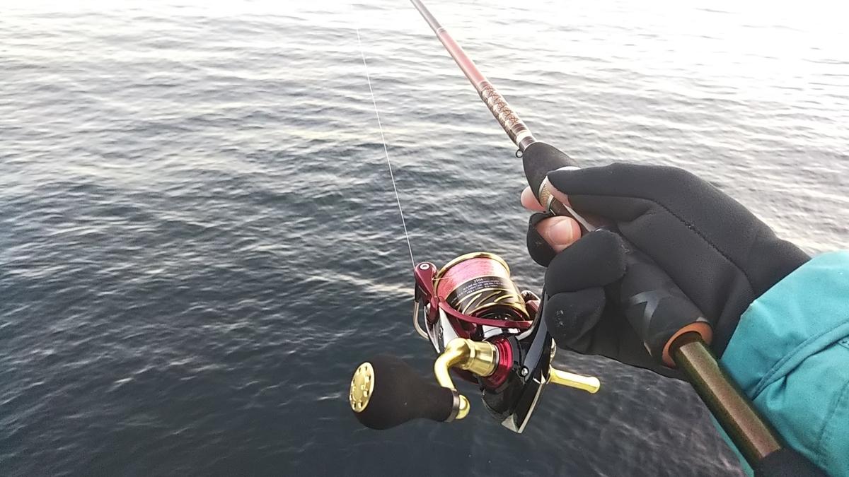 f:id:berao-setouchi-fishing:20210101115118j:plain
