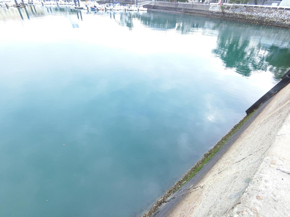 f:id:berao-setouchi-fishing:20210114223021j:plain