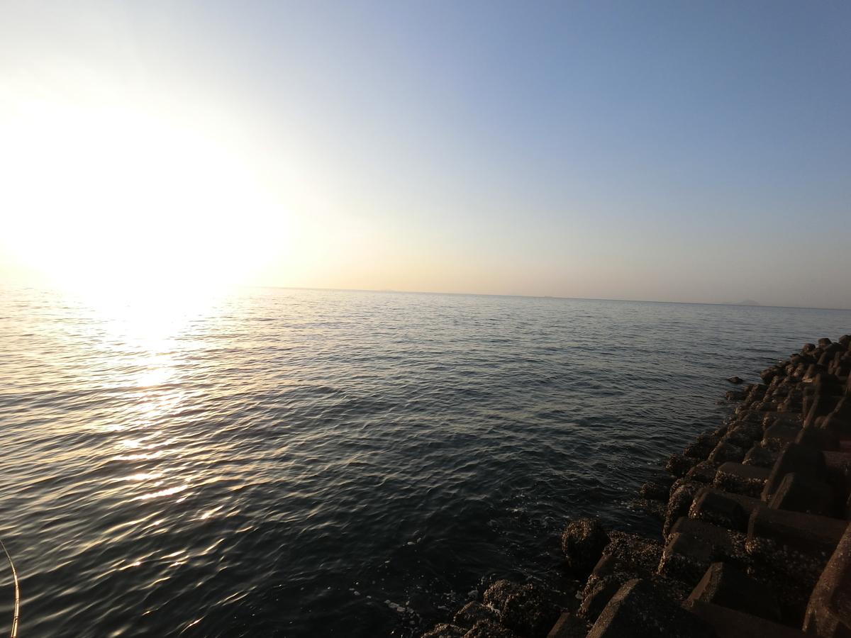 f:id:berao-setouchi-fishing:20210114223042j:plain