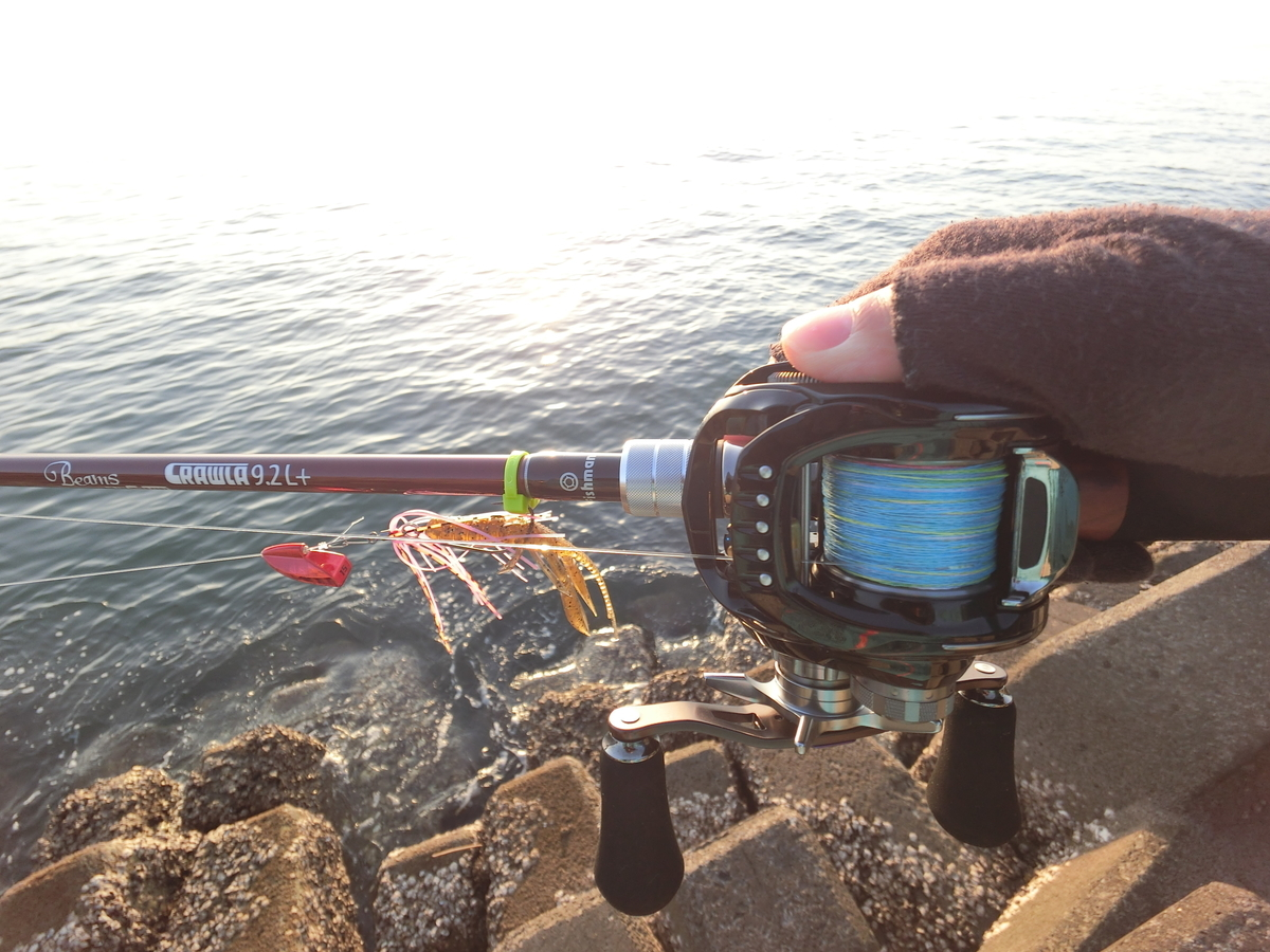 f:id:berao-setouchi-fishing:20210114223120j:plain
