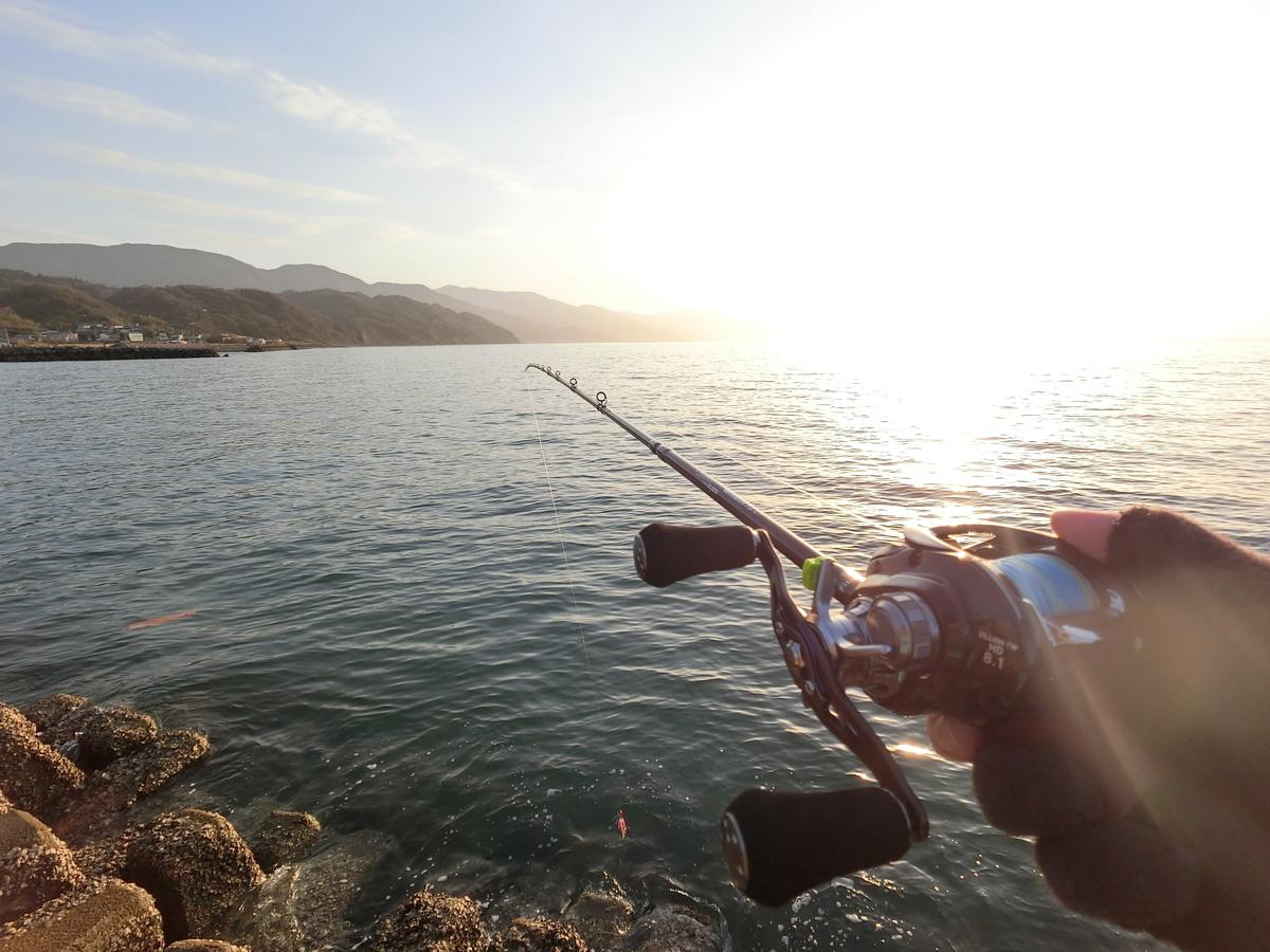 f:id:berao-setouchi-fishing:20210114223207j:plain