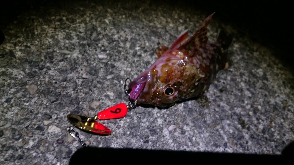 f:id:berao-setouchi-fishing:20210117172407j:plain