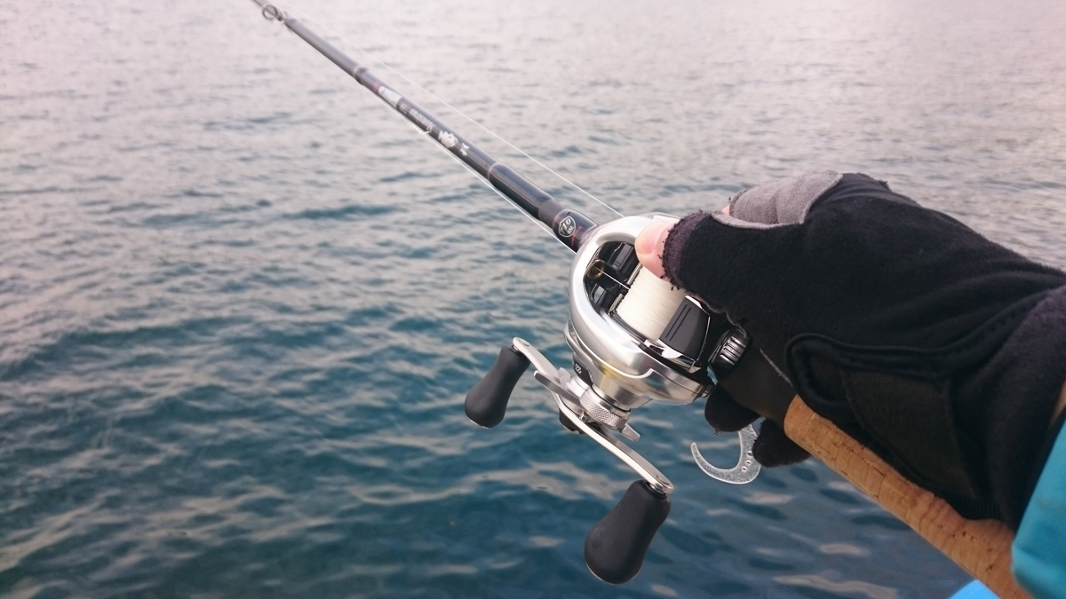 f:id:berao-setouchi-fishing:20210117172651j:plain