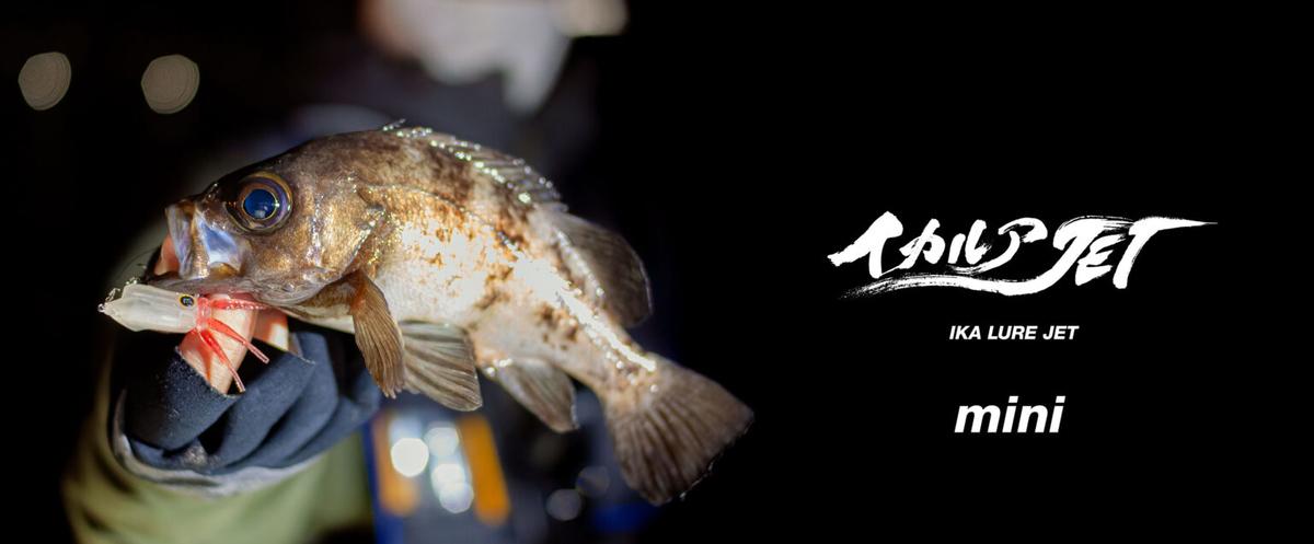 f:id:berao-setouchi-fishing:20210125193336j:plain