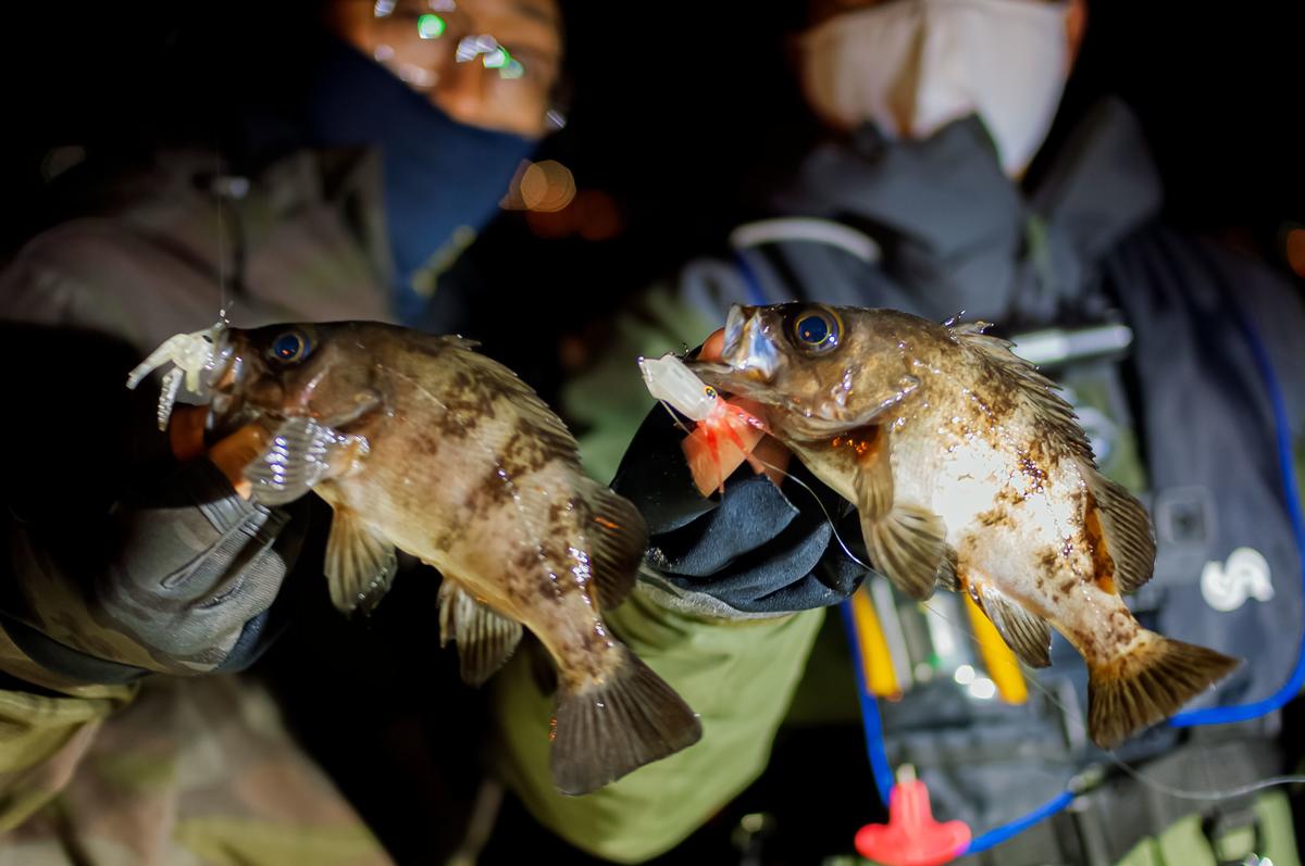f:id:berao-setouchi-fishing:20210125193400j:plain