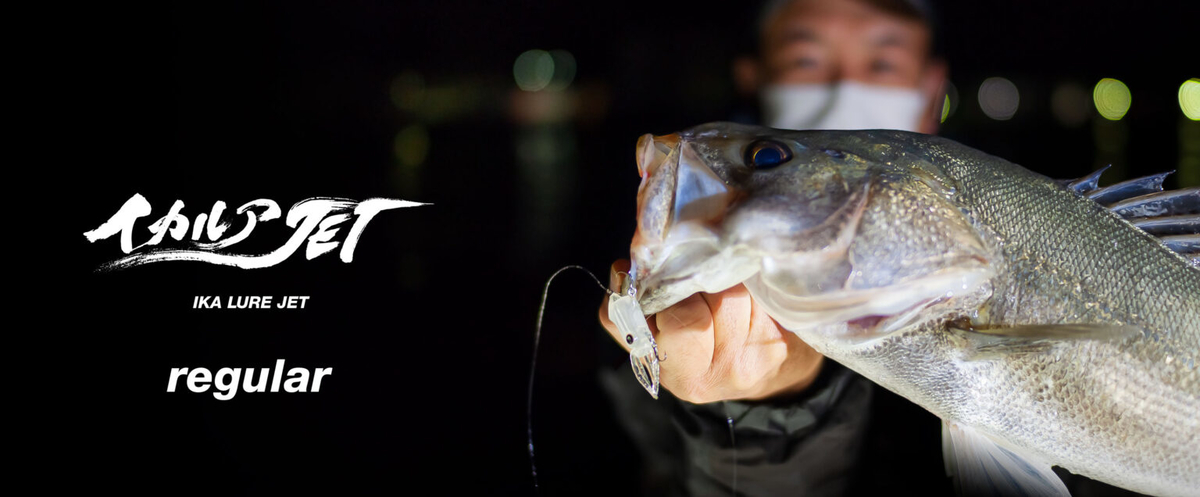 f:id:berao-setouchi-fishing:20210125193409j:plain