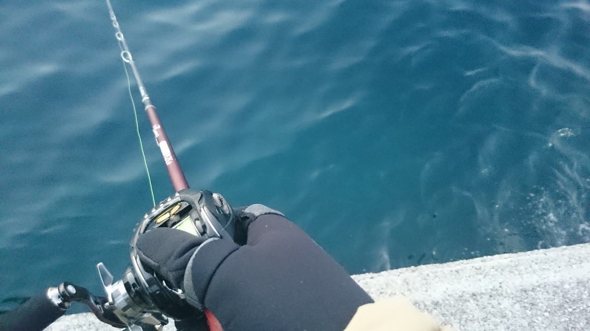 f:id:berao-setouchi-fishing:20210131171007j:plain