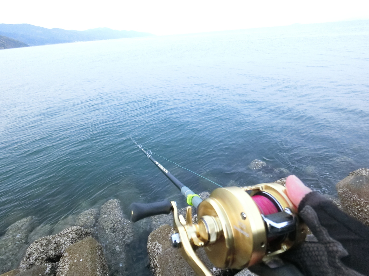f:id:berao-setouchi-fishing:20210411161829j:plain