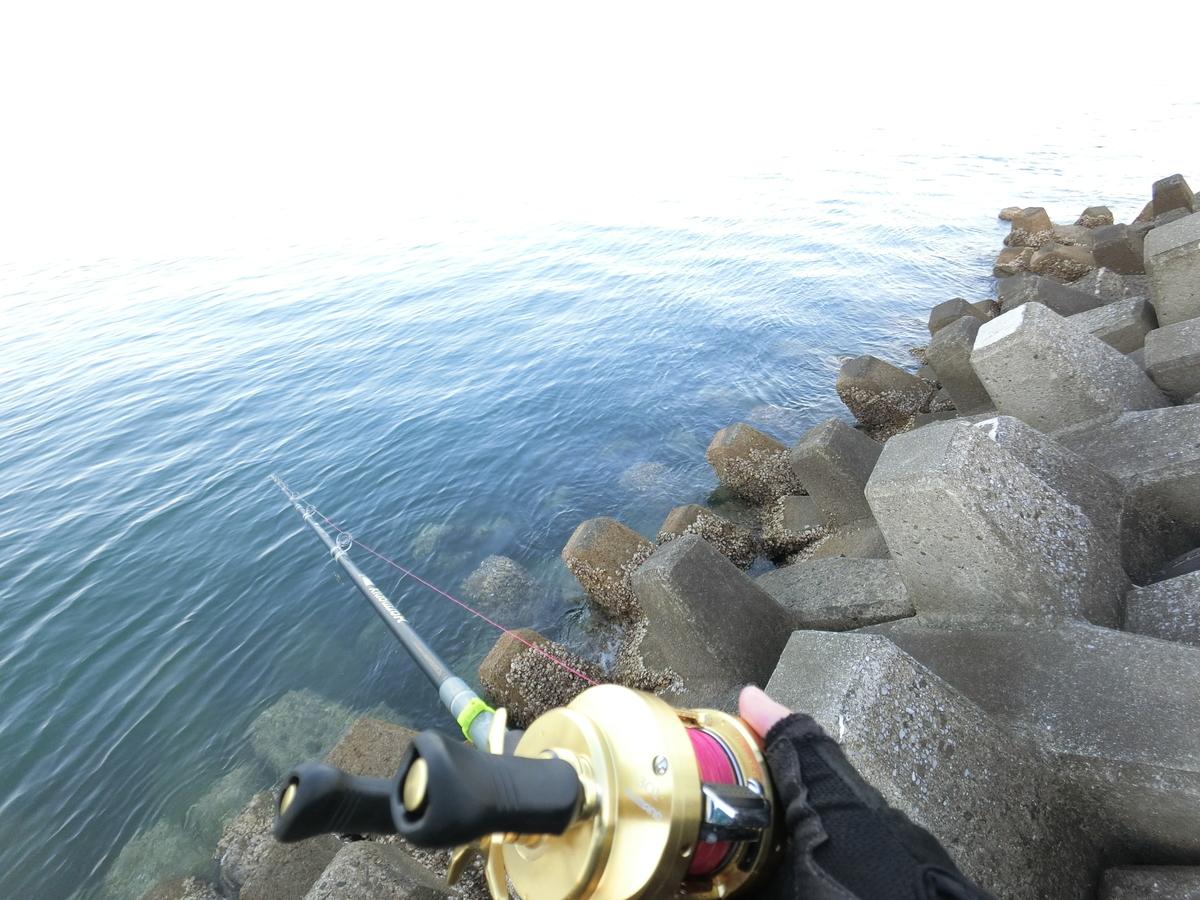 f:id:berao-setouchi-fishing:20210411161859j:plain