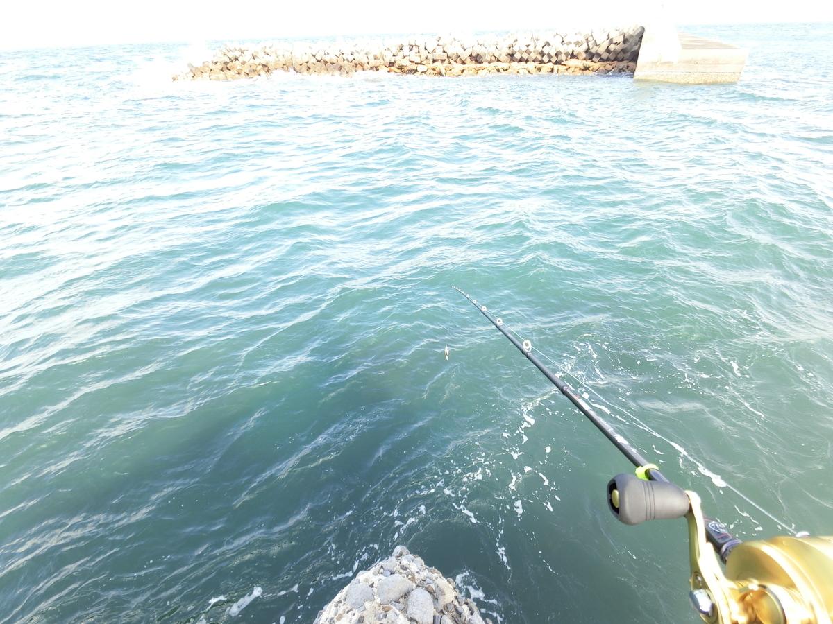 f:id:berao-setouchi-fishing:20210418195712j:plain