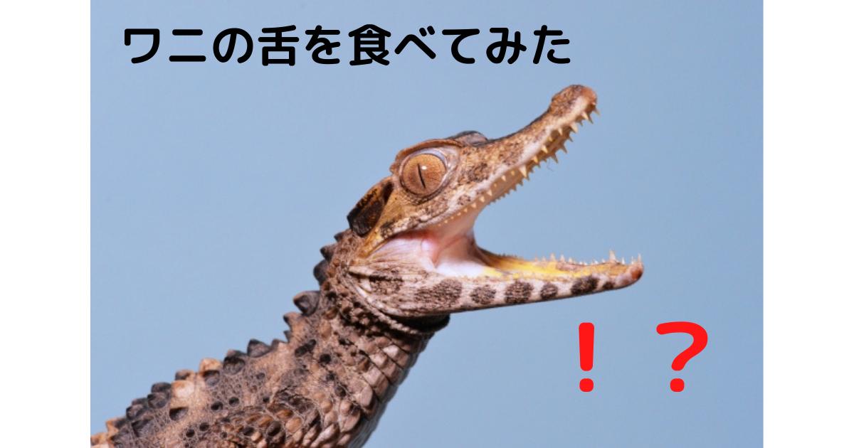 f:id:berao-setouchi-fishing:20210507115006p:plain