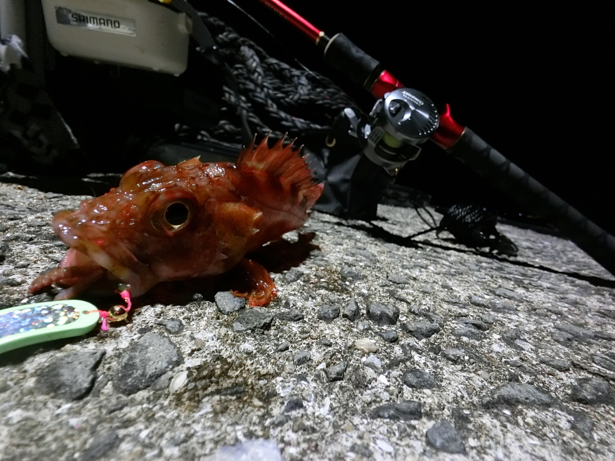 f:id:berao-setouchi-fishing:20210509112836j:plain
