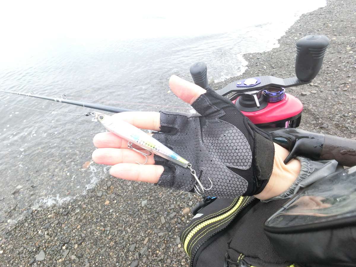 f:id:berao-setouchi-fishing:20210515104028j:plain