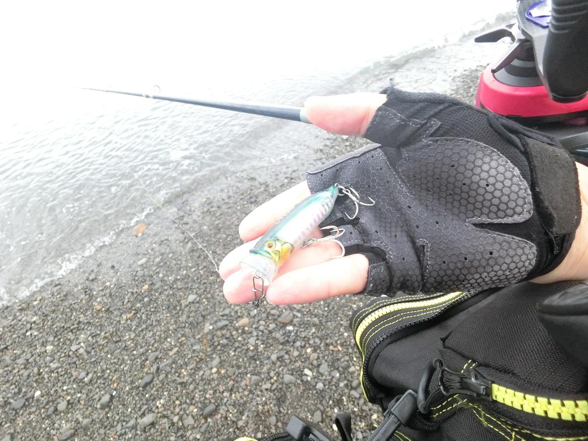 f:id:berao-setouchi-fishing:20210515104030j:plain