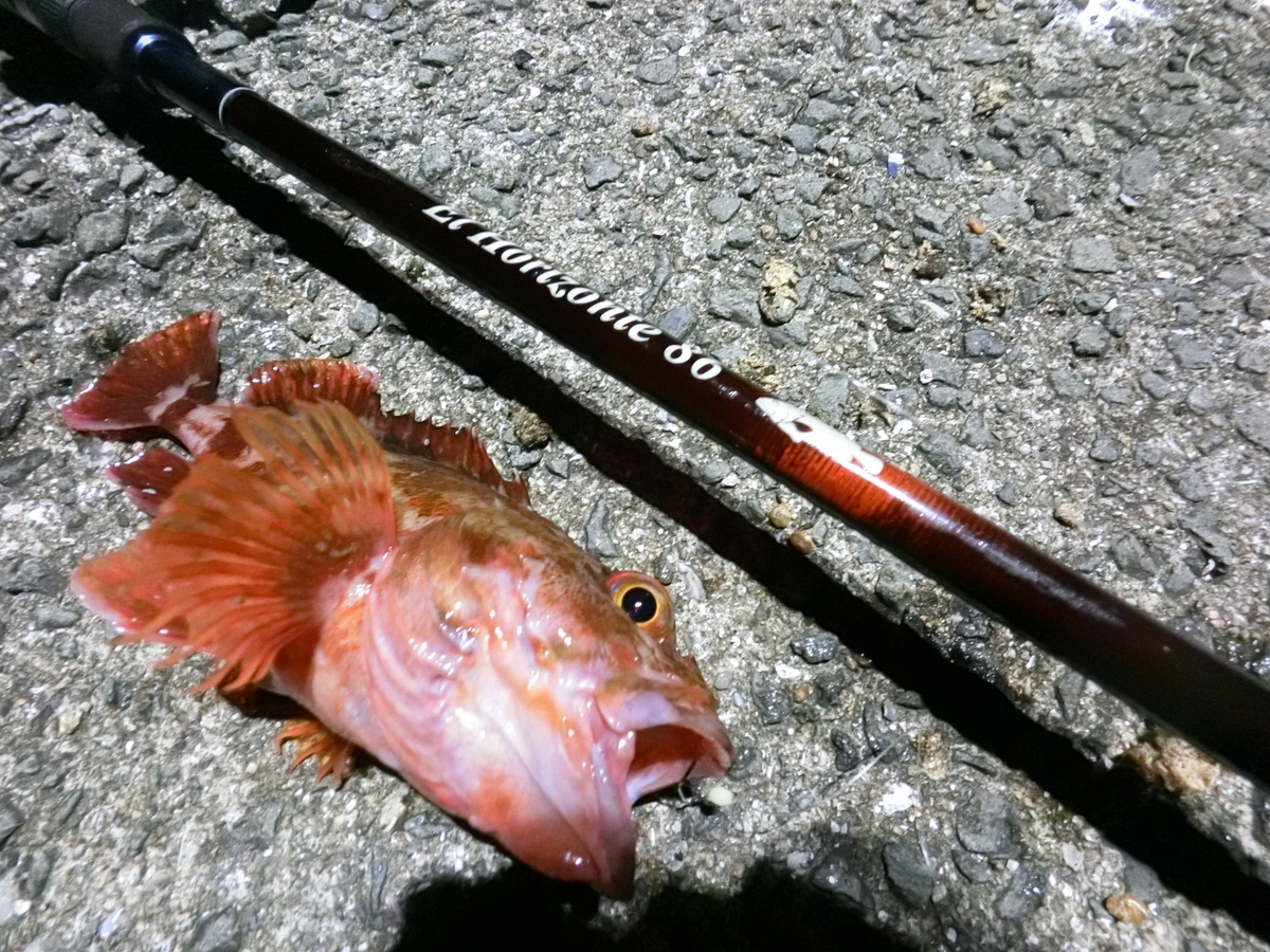 f:id:berao-setouchi-fishing:20210523154903j:plain