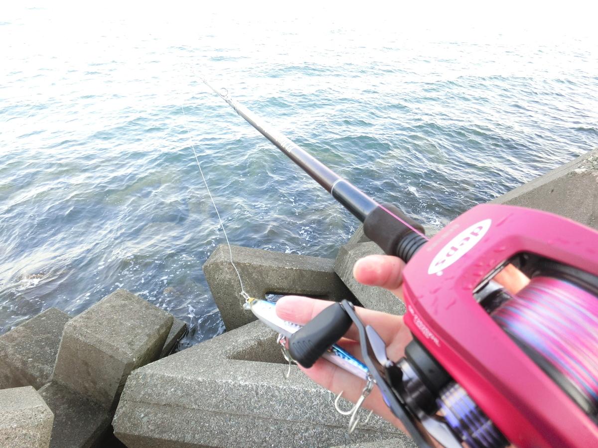 f:id:berao-setouchi-fishing:20210523155205j:plain