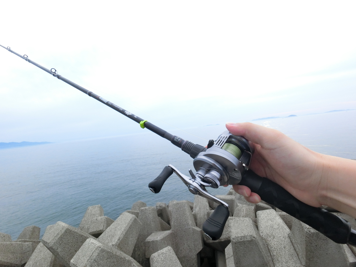 f:id:berao-setouchi-fishing:20210607161258j:plain