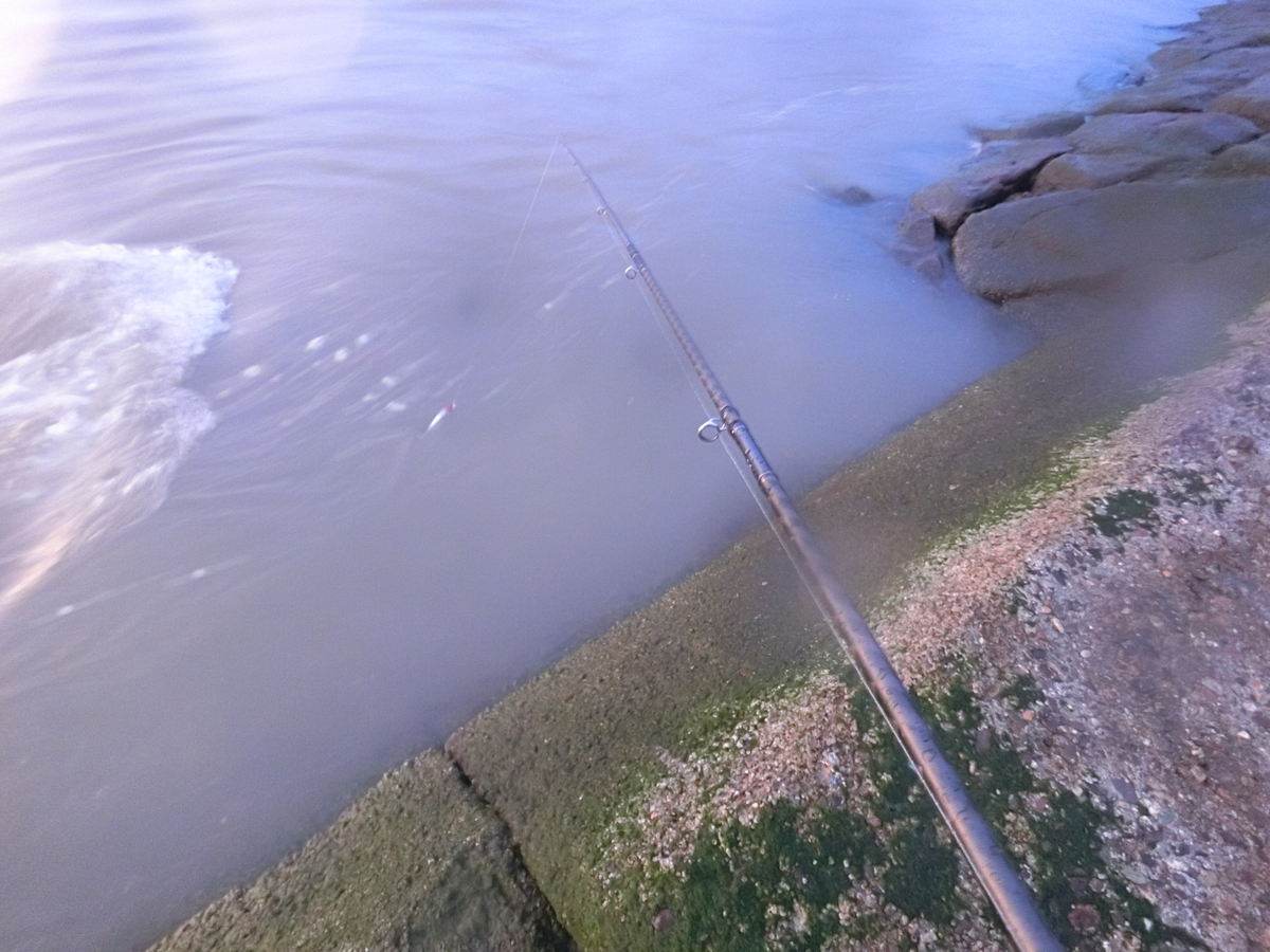 f:id:berao-setouchi-fishing:20210718110803j:plain