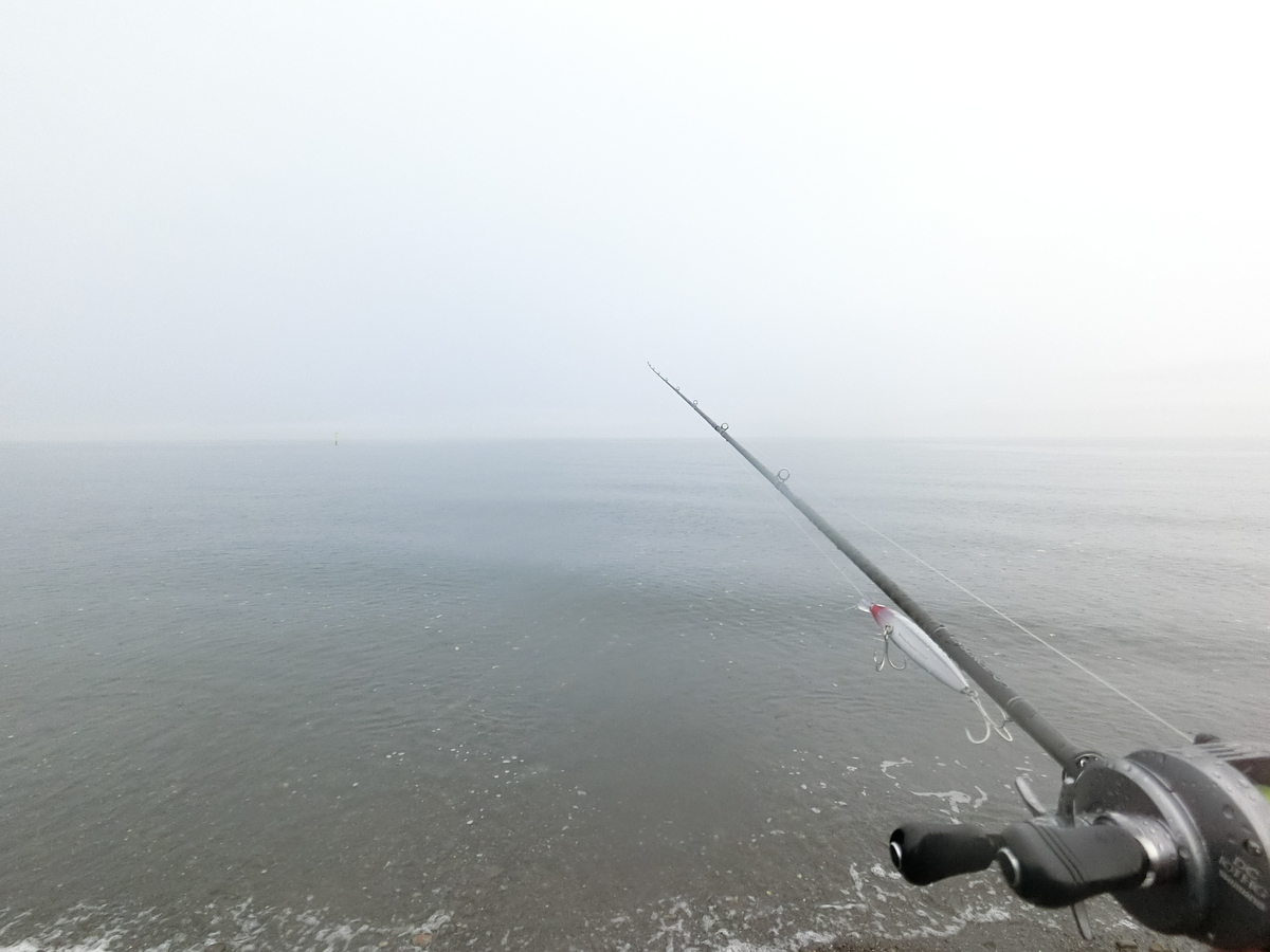 f:id:berao-setouchi-fishing:20210718110811j:plain