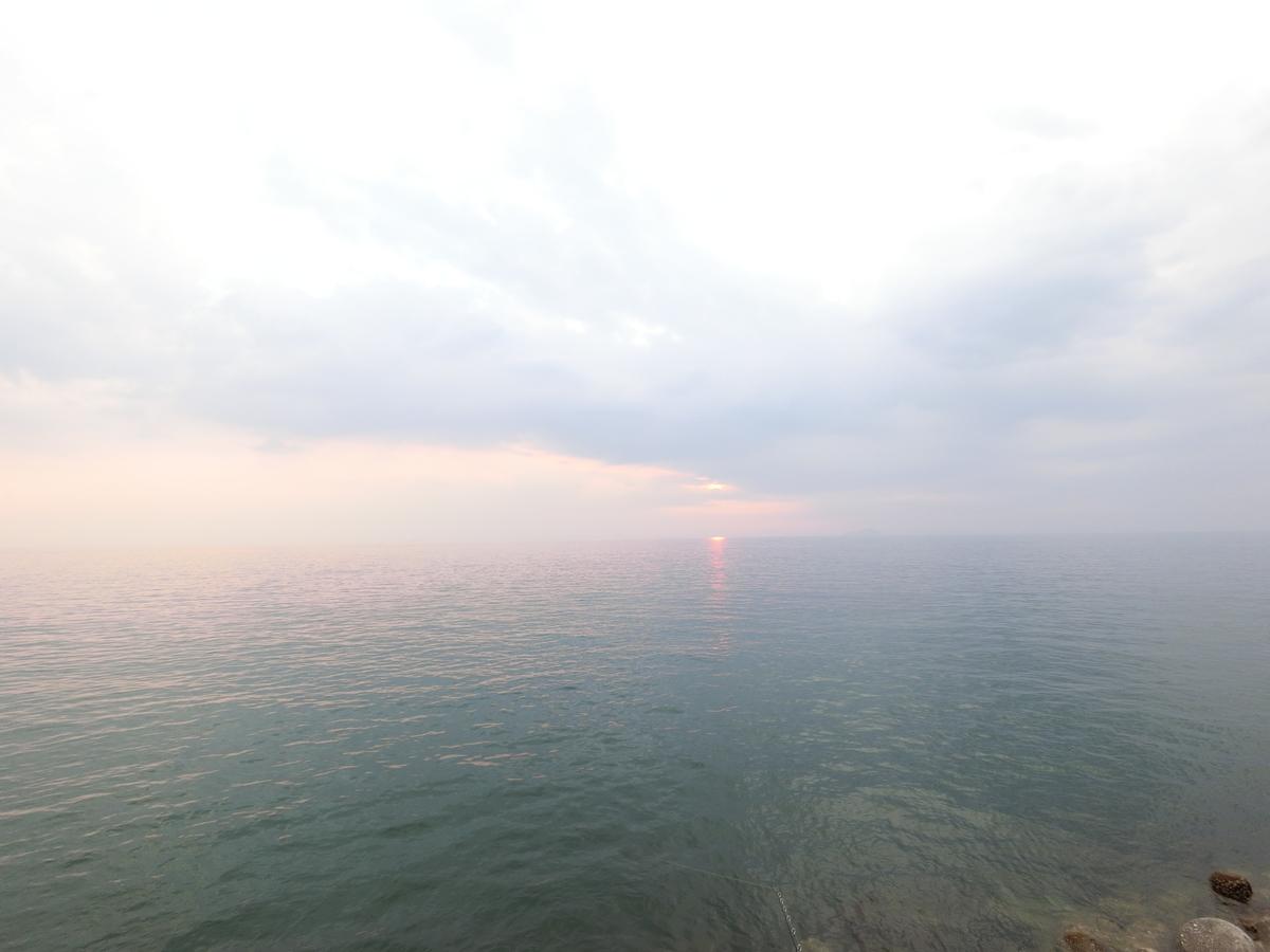 f:id:berao-setouchi-fishing:20210801224859j:plain