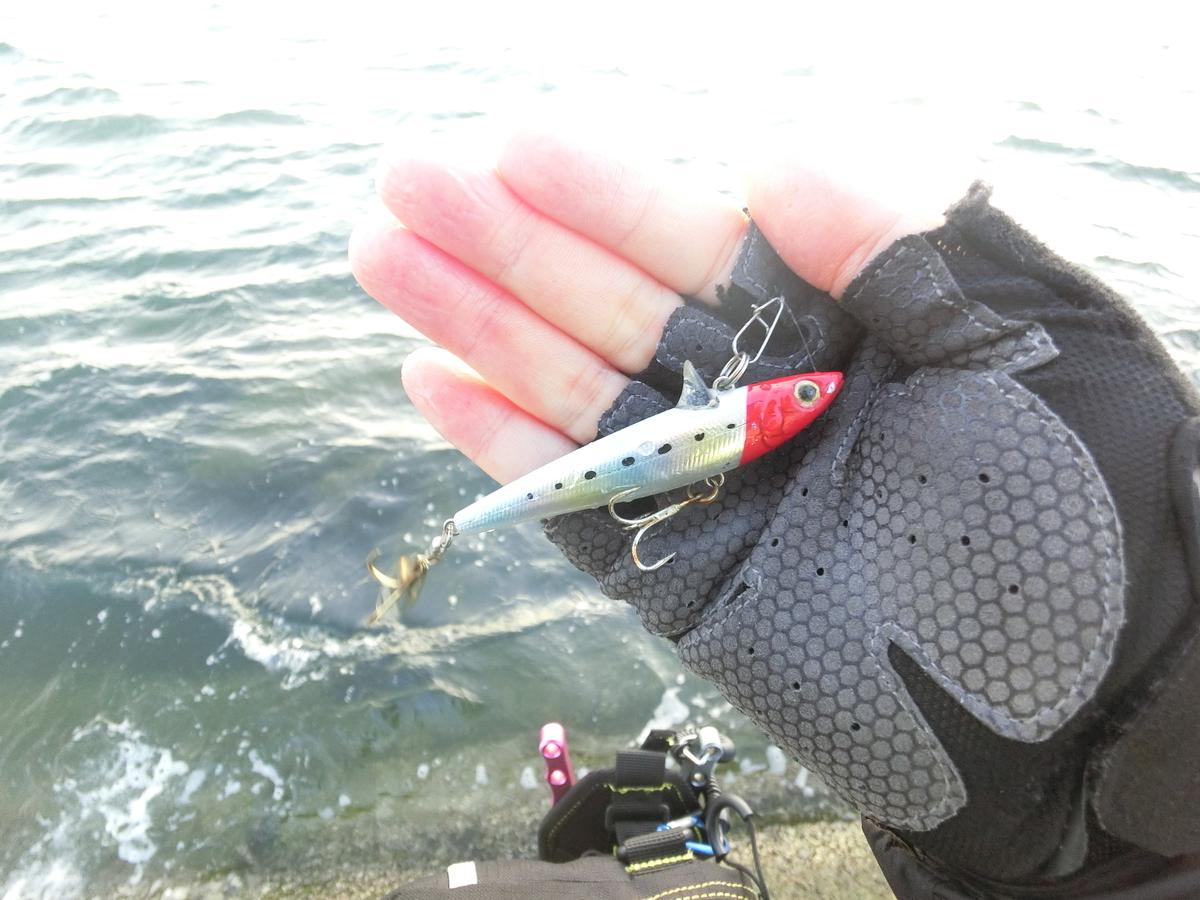 f:id:berao-setouchi-fishing:20211003142814j:plain