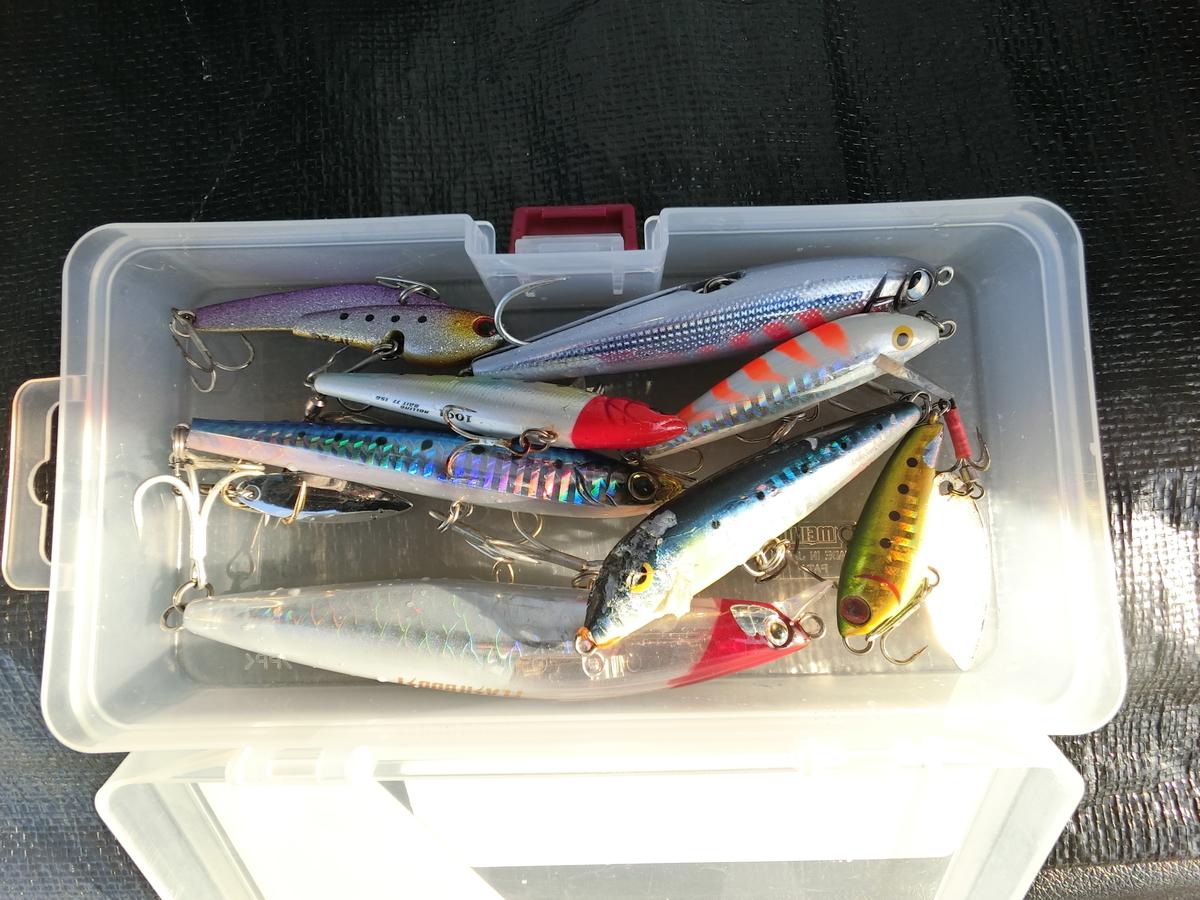 f:id:berao-setouchi-fishing:20211003142909j:plain