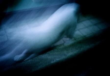 f:id:bergk:20061229230700j:image