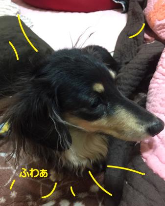 f:id:beriru:20170213125524j:plain