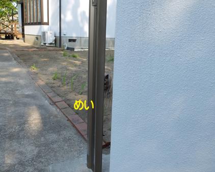 f:id:beriru:20170501173152j:plain