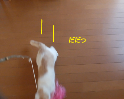 f:id:beriru:20180112173836j:plain