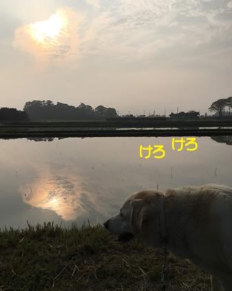 f:id:beriru:20190422210552j:plain