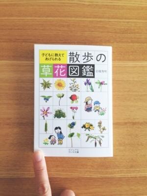 f:id:berry-no-kurashi:20180413115302j:plain