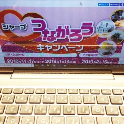f:id:berry-no-kurashi:20190201134125j:plain