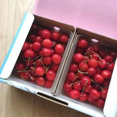 f:id:berry-no-kurashi:20190628115228j:plain