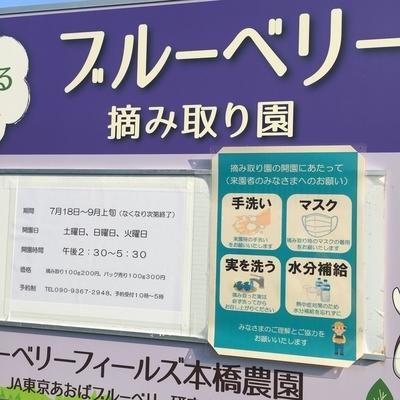 f:id:berry-no-kurashi:20200816132812j:plain