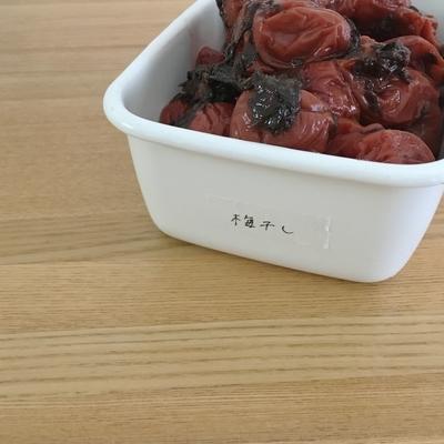 f:id:berry-no-kurashi:20201209134334j:plain