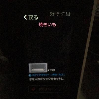 f:id:berry-no-kurashi:20210218142147j:plain