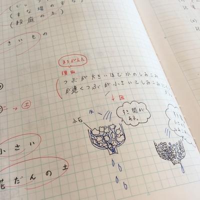 f:id:berry-no-kurashi:20210506114435j:plain